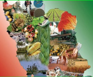 کانال تلگرام غذا کشاورزی ایران